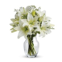 Elegant White Lilies in a Vase
