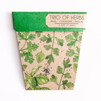 Sownsow Seeds - Trio of Herbs