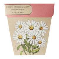 Sownsow Seeds- Happy Mother's Day Chrysanthemums