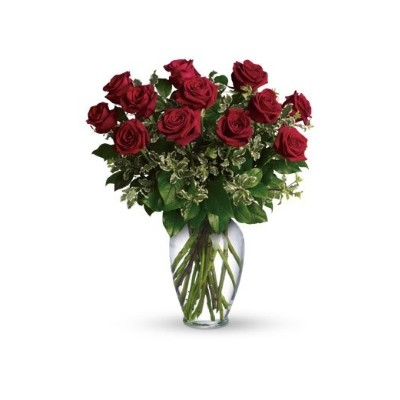A Dozen Red Roses in a vase